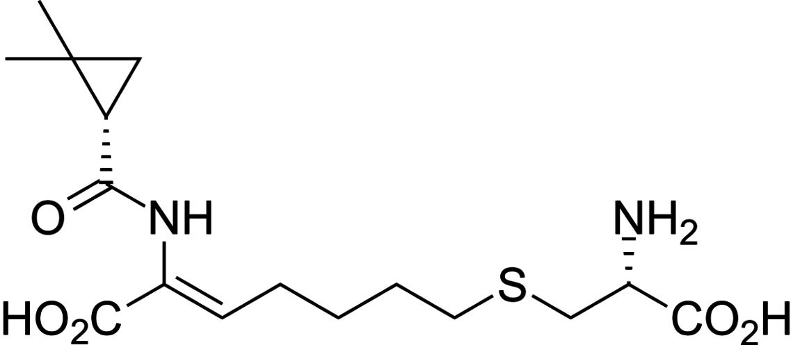 cilastatina