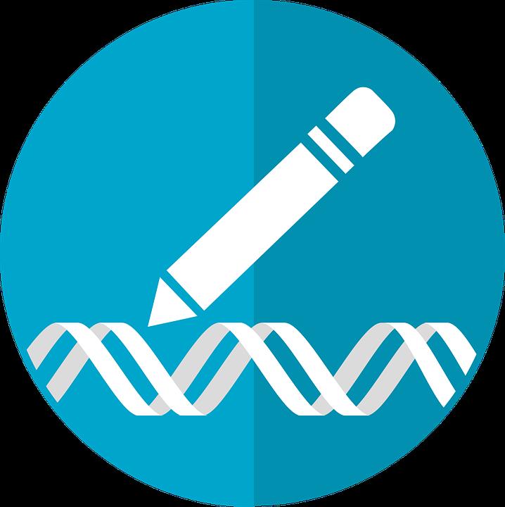 gen investigacion